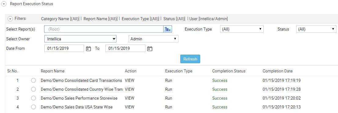 Report Execution Status