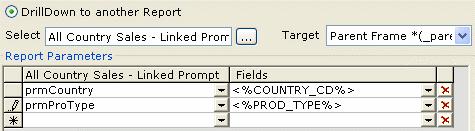 Report Parameters area