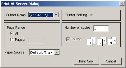Print At Server dialog